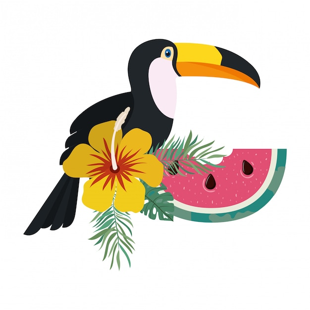 Quadro de tucano e flor de verão Vetor grátis