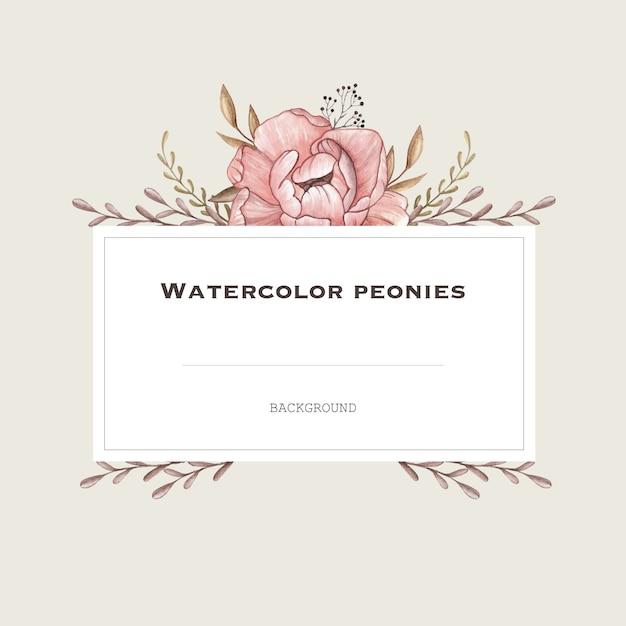 Quadro de vetor aquarela com peônias pastel em estilo vintage. fundo de design. Vetor Premium