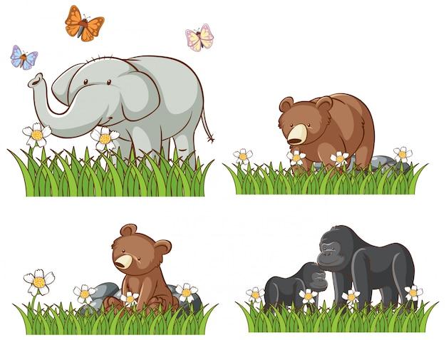 Quatro animais no jardim Vetor grátis