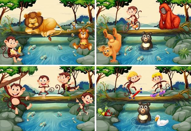 Quatro cenas com animais selvagens no rio Vetor grátis