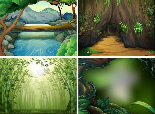 Quatro cenas florestais diferentes Vetor grátis
