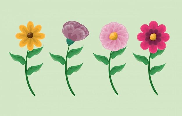 Quatro flores coloridas em verde Vetor grátis