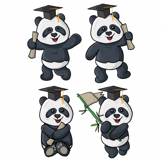 Quatro ilustrações de formatura de panda Vetor Premium