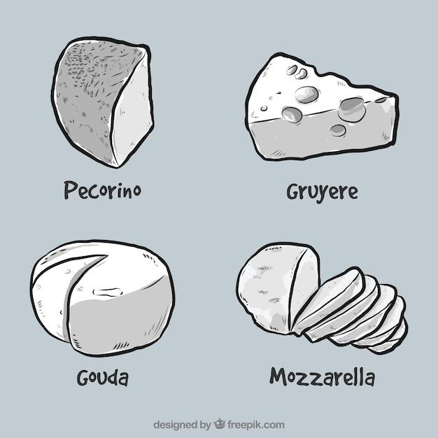 Quatro queijos deliciosos Vetor grátis
