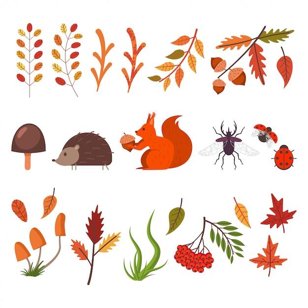 Queda de elementos decorativos. folhas de outono, grama, cogumelos, animais e insetos. Vetor Premium