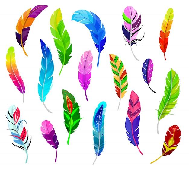 Quil de penas macias de penas de vetor e pássaros de penas coloridas pluma conjunto de decoração de caneta de pena de cor Vetor Premium