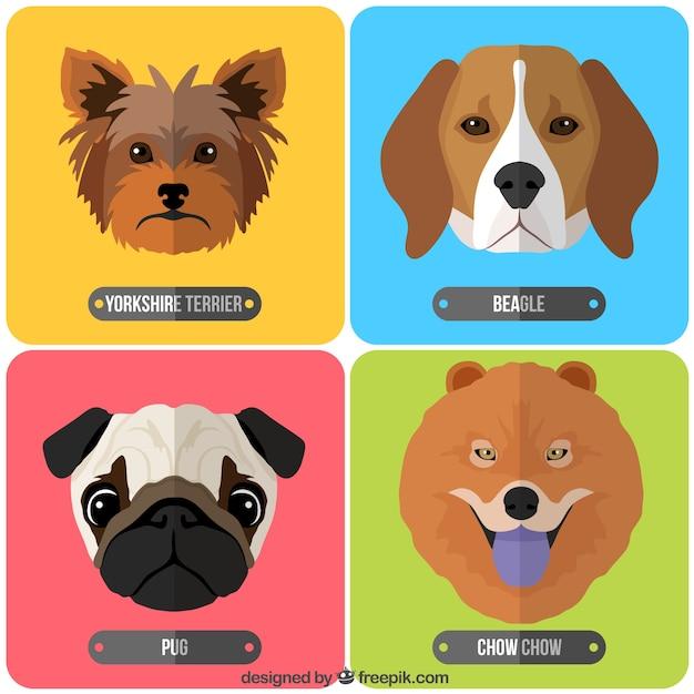 Raças de cães coleção Vetor grátis