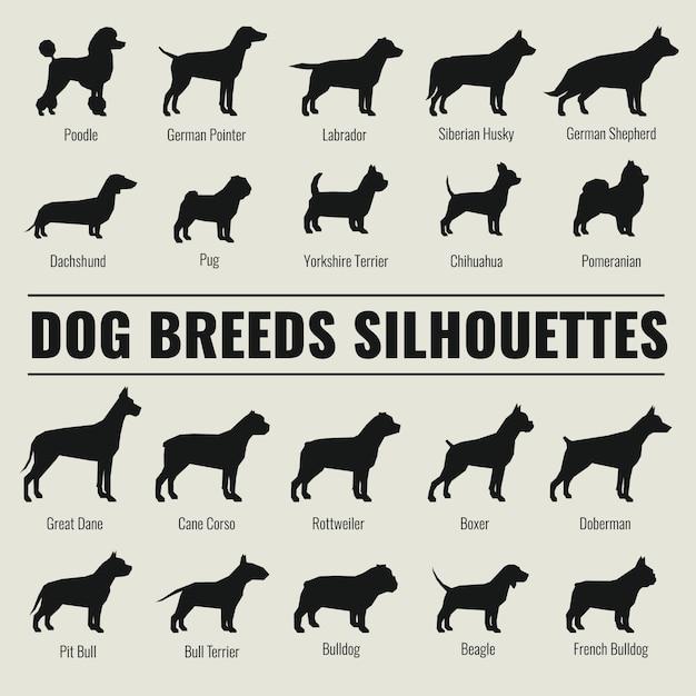 Raças de cães vector conjunto de silhuetas Vetor Premium