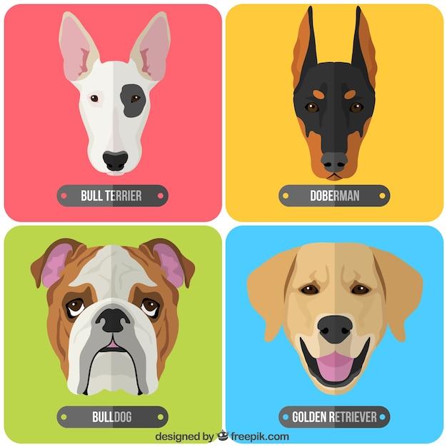 Raças de cães Vetor grátis