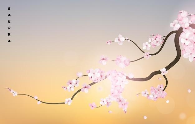 Ramo de cereja de sakura japão realista Vetor Premium