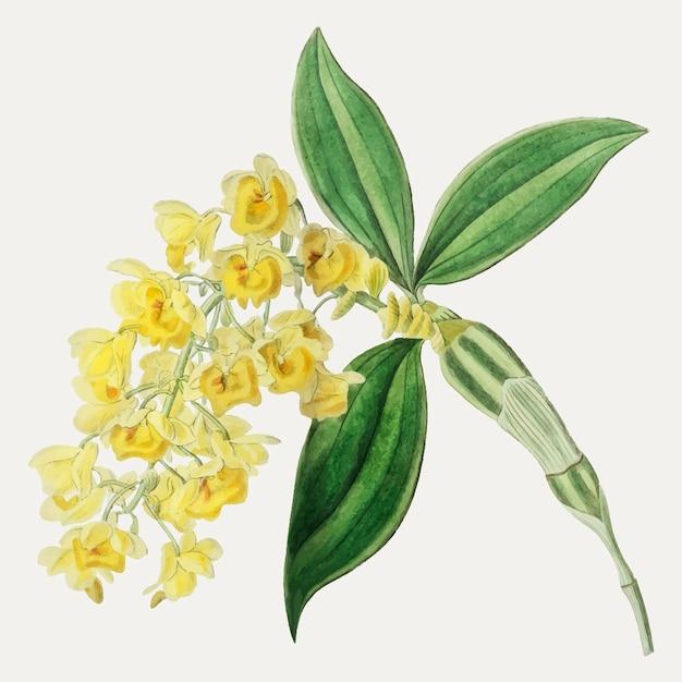 Ramo de flor amarela Vetor grátis