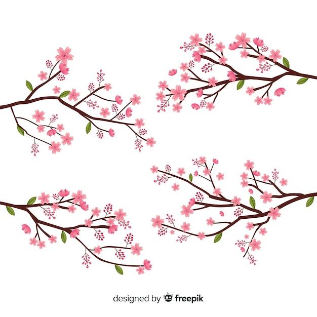 Ramo de flor de cerejeira desenhado a mão Vetor grátis