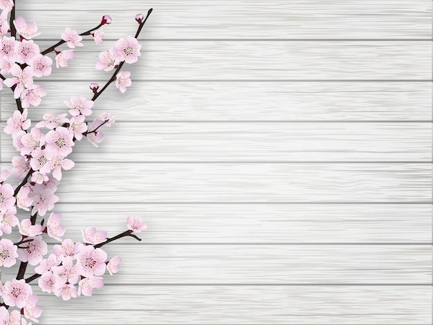 Ramo de flor de cerejeira rosa em fundo branco de madeira velha. primavera realista Vetor Premium