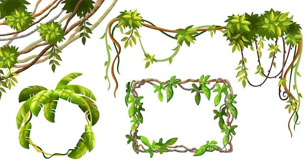 Ramos e folhas de cipó. Vetor grátis