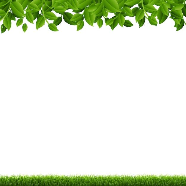 Ramos e grama verdes Vetor Premium