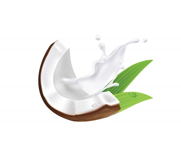 Realista de coco orgânico leite, óleo e verde palm folhas folhas ilustração Vetor Premium