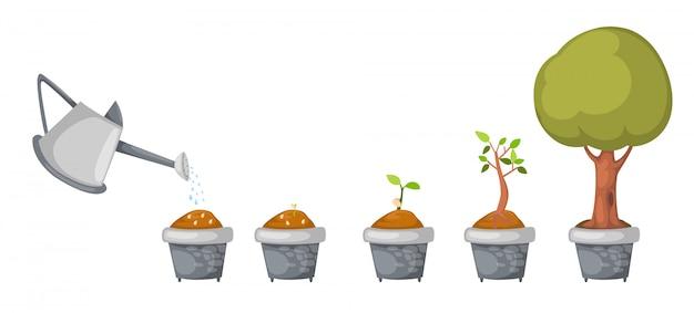 Regador com vetor de ciclo de vida da árvore Vetor Premium