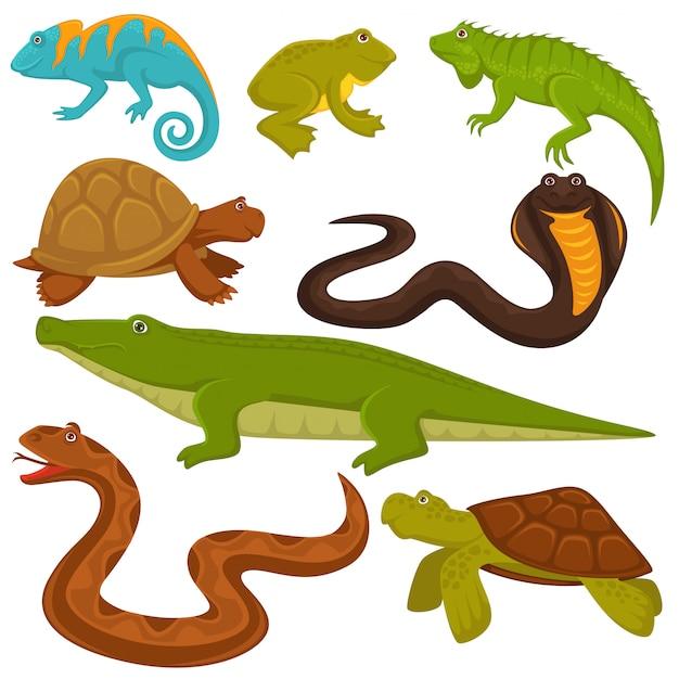 Répteis e animais reptilianos tartaruga, crocodilo ou camaleão e lagarto conjunto de cobra Vetor Premium