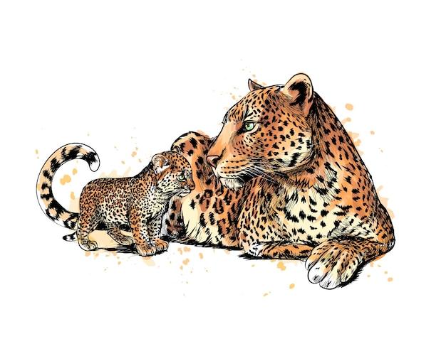 Retrato de um leopardo de um toque de aquarela, esboço desenhado à mão. ilustração de tintas Vetor Premium