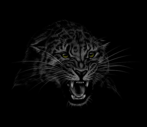 Retrato de uma cabeça de leopardo em um fundo preto. o sorriso de um leopardo. ilustração Vetor Premium