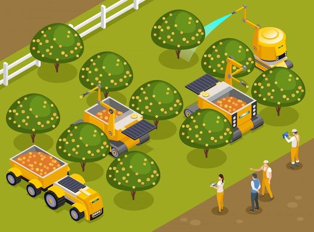 Robôs agrícolas para colheita de pomares com composição isométrica com máquinas automatizadas que colhem frutas e regam árvores Vetor grátis