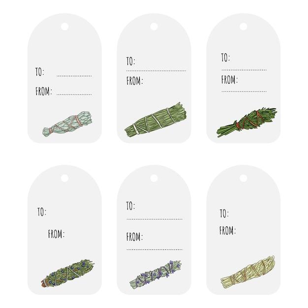Sage blud varas desenhadas à mão conjunto de etiquetas do presente. coleção de feixes de ervas Vetor Premium