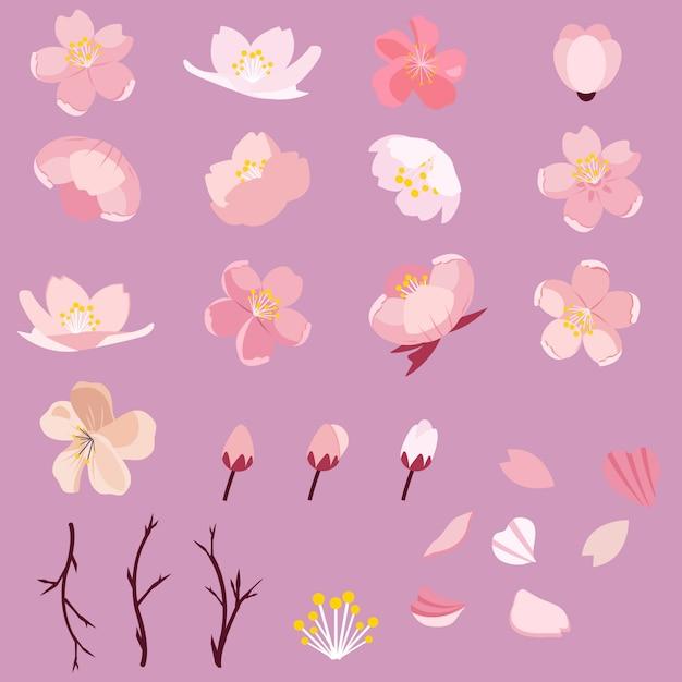 Sakura conjunto de pacote de flor de cerejeira Vetor Premium