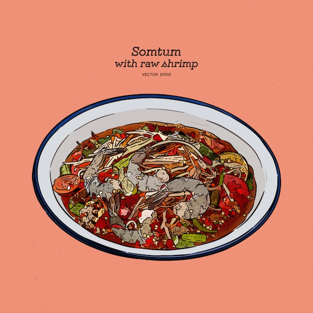 Salada picante da papaia com camarão cru fresco ou somtum, alimento tailandês local. esboço de desenho de mão. Vetor Premium