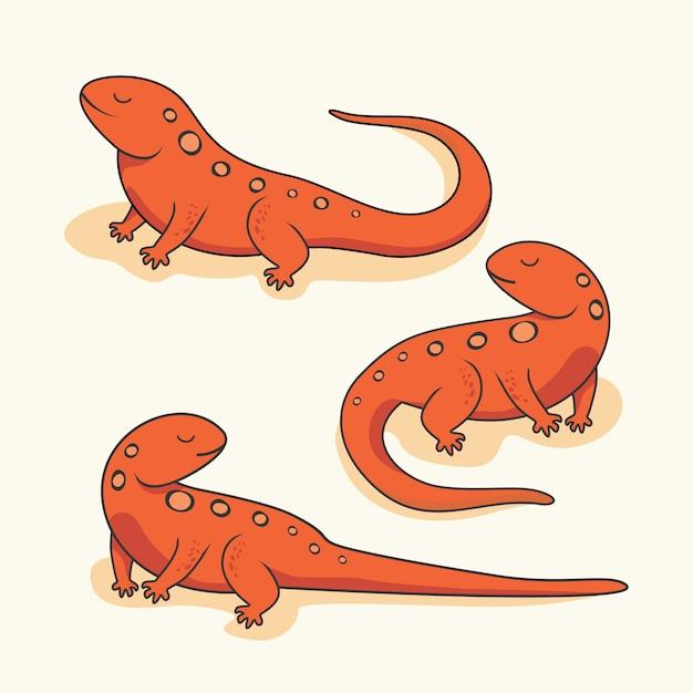 Salamandra newt cartoon réptil anfíbio animais Vetor Premium