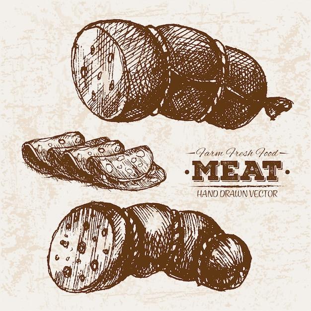Salsichas de mão desenhada Vetor Premium