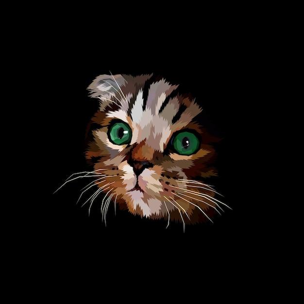 Scotish fold cabeça de gato no escuro Vetor Premium