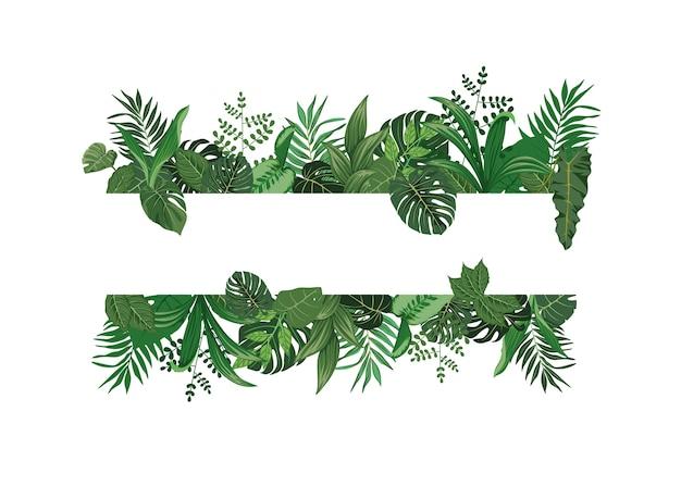 Seja criativo com vetores de design plano de folhas tropicais que adornam fundos para citações românticas e tipografia sweet spirit. Vetor Premium