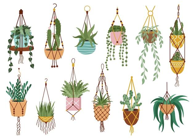 Seleção de plantas em vasos Vetor Premium