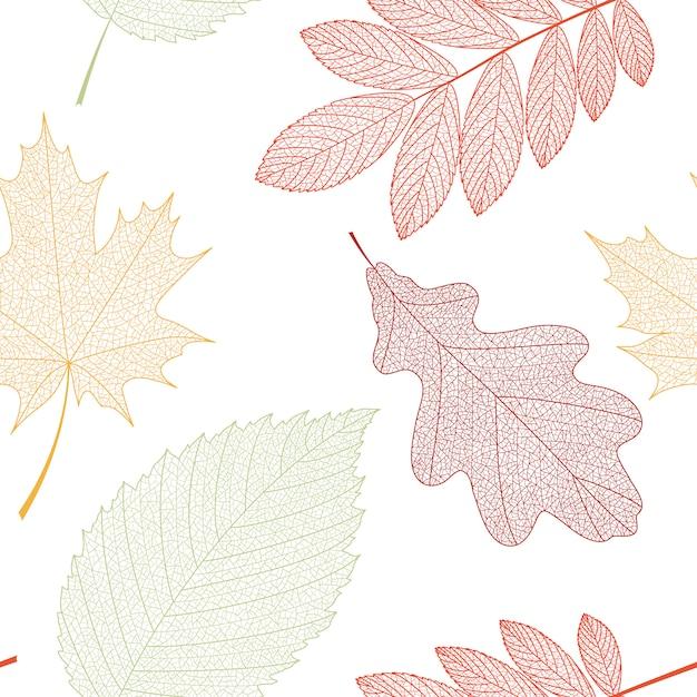Sem costura de fundo com folhas verdes, laranja e vermelhas. Vetor Premium