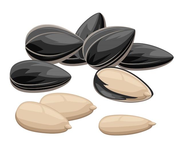 Sementes de girassol com casca e sem comida pronta para comer ilustração na página do site da web com fundo branco e aplicativo móvel Vetor Premium