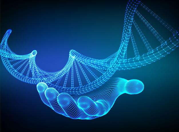 Sequência de dna na mão. wireframe dna código moléculas estrutura malha. Vetor grátis