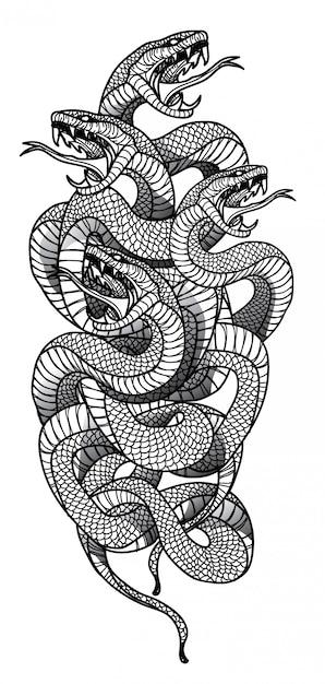 Serpente Vetor Premium