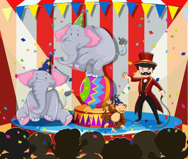 Show de animais no circo Vetor grátis