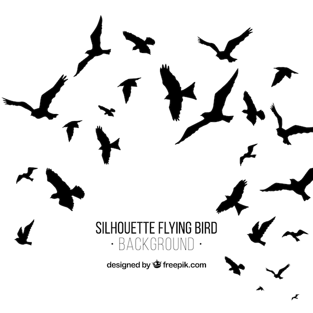 Silhouette voando pássaro fundo Vetor grátis