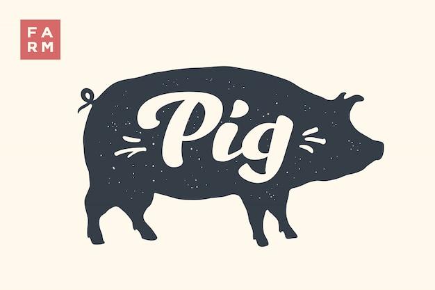 Silhueta de porco com letras Vetor Premium