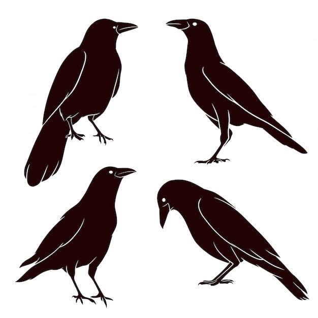 Silhueta desenhada de mão do corvo Vetor Premium