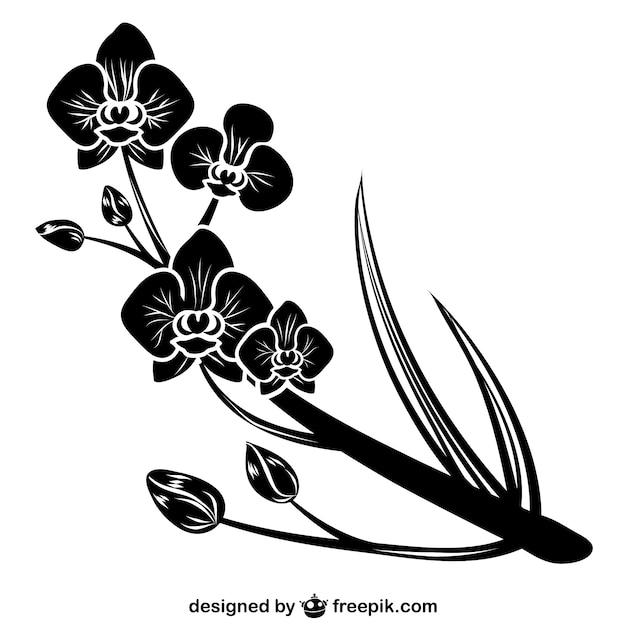 Silhueta negra orquídea Vetor grátis