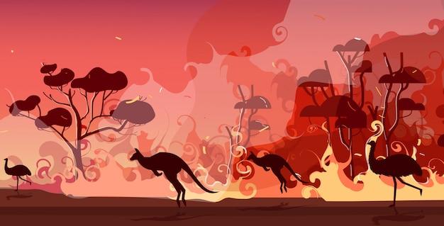 Silhuetas de animais australianos correndo de incêndios florestais na austrália incêndio florestal árvores queimadas desastre natural conceito intensas chamas alaranjadas horizontais Vetor Premium