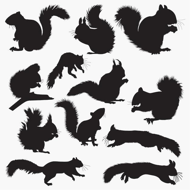 Silhuetas de esquilo Vetor Premium