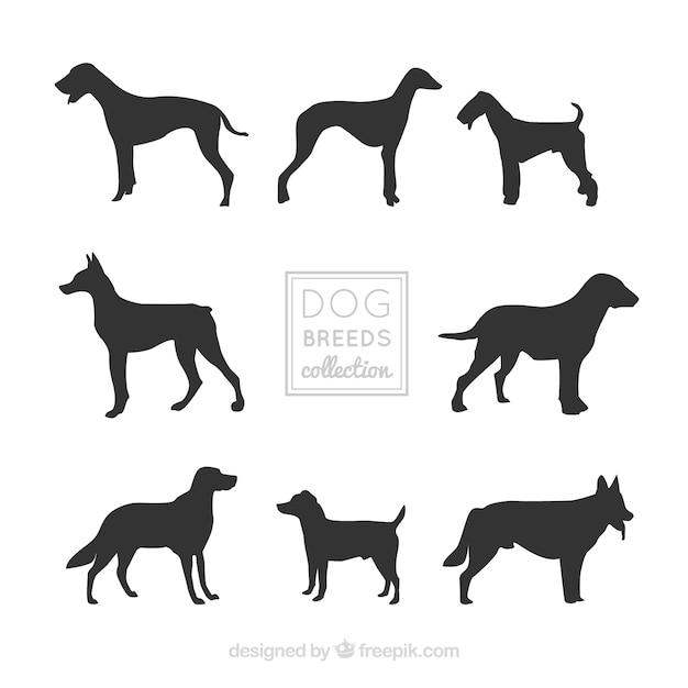 Silhuetas decorativas do cão de raças diferentes Vetor grátis