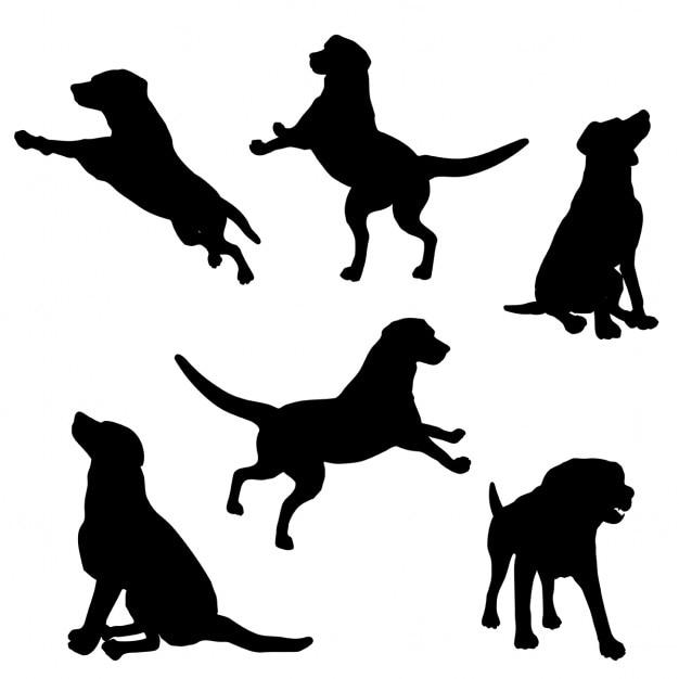 Silhuetas dos cães em vários poses Vetor grátis