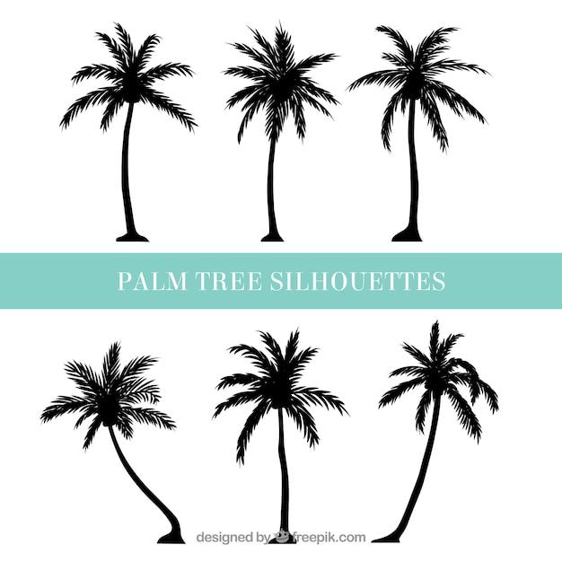Silhuetas, palma, árvores Vetor grátis