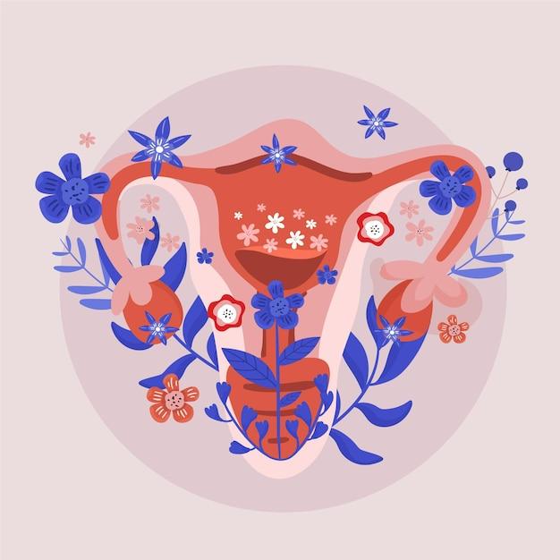 Sistema reprodutivo feminino de design floral Vetor grátis