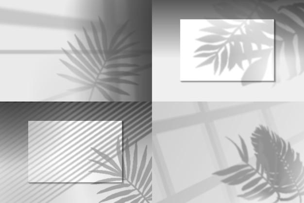 Sobreposição de efeito transparente com sombras de folhas Vetor grátis