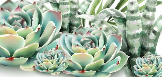 Suculentas e aquarela de aloe vera Vetor Premium